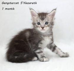 Назар, 1 месяц